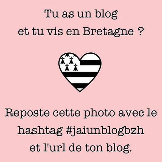 Coucou ! #jaiunblogbzh et c'est www.mariegraindesel.fr Et toi ? #bzh…