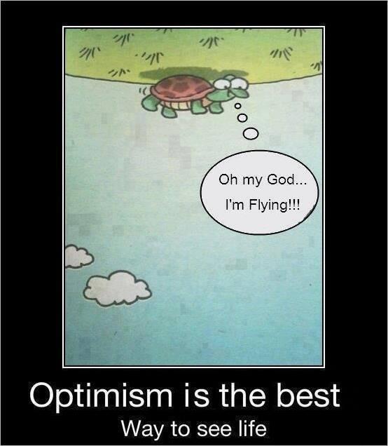 Attention : l'optimisme de tortue est le plus puissant de tous !