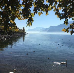 Douce semaine les amis ! goodvibes lacleman vevey Suisse montagneshellip